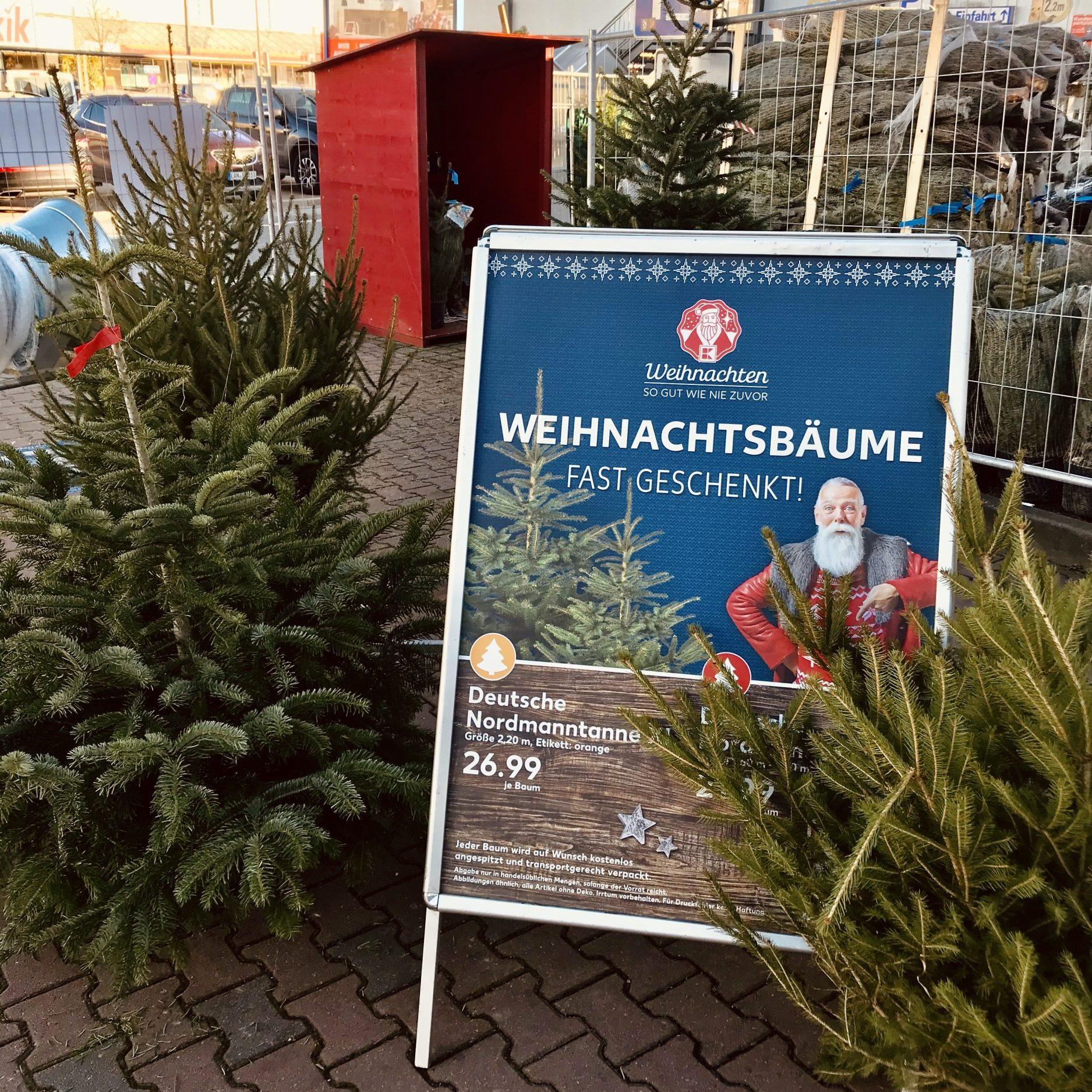 Weihnachtsbäume im Gäubodenpark 🎄🎅