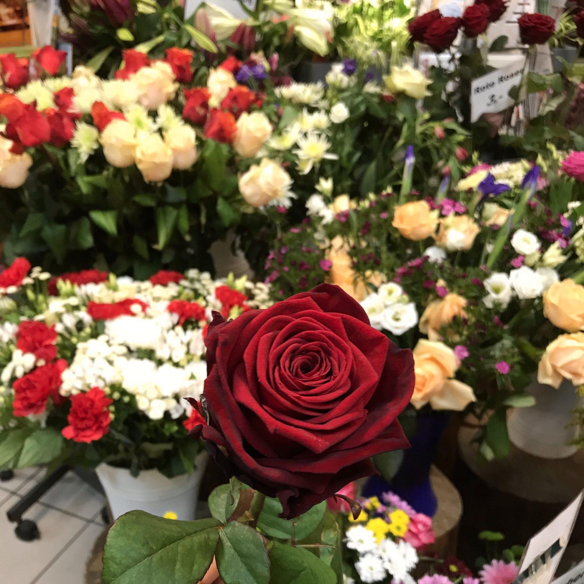 Weil Blumen mehr als 1.000 Worte sagen 🌹❤️🌹